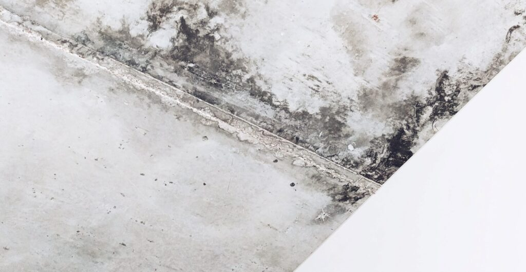mold on interior ceiling