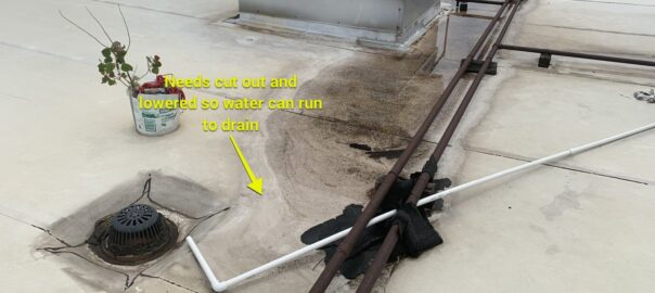 water not draining from roof