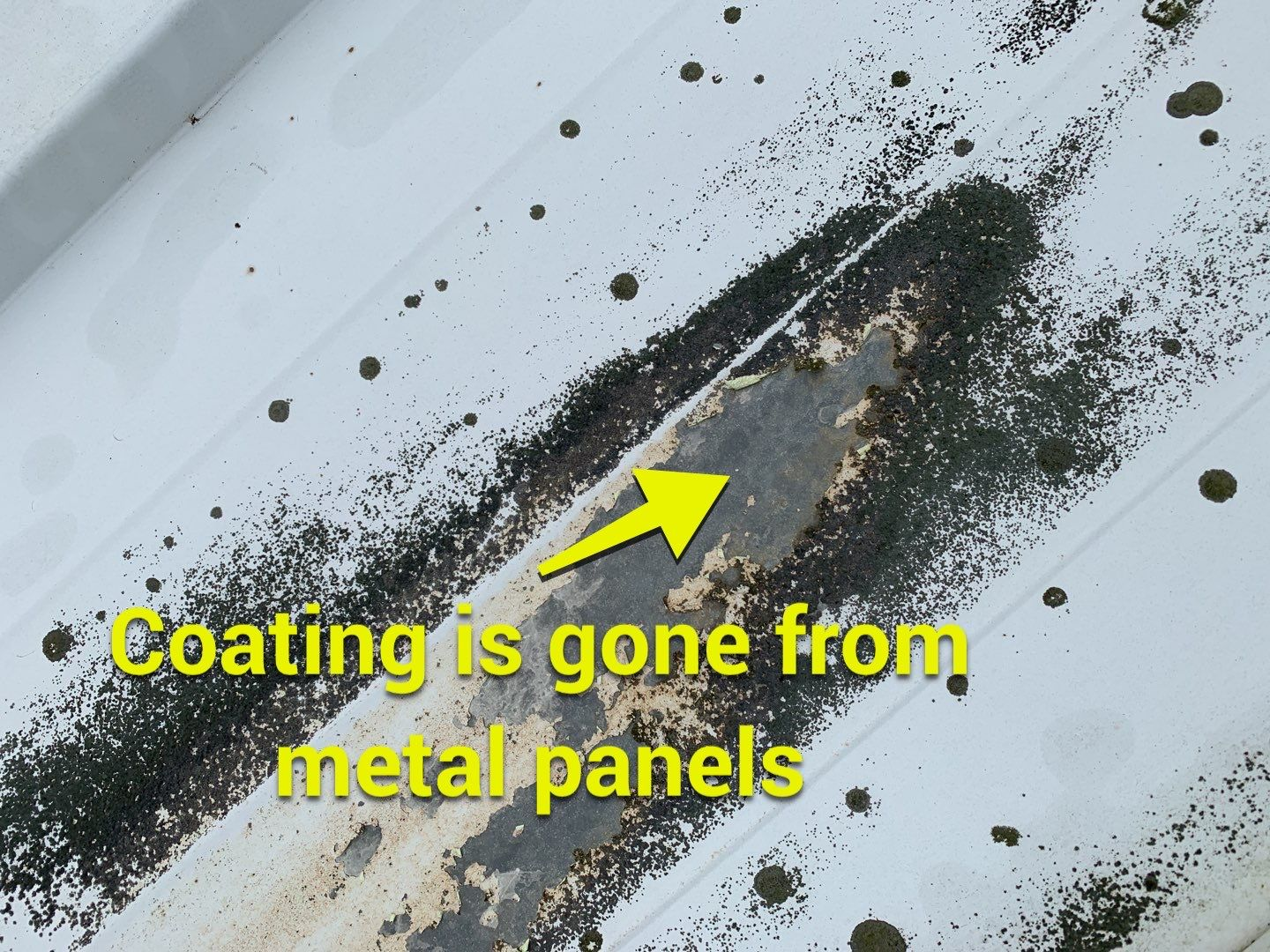 coating is gone from metal panels