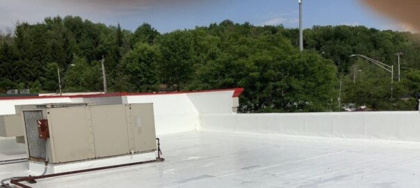 monolithic roof coating in Thomasville, New York